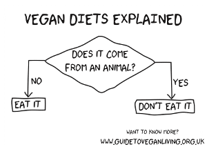 vegan diets explained